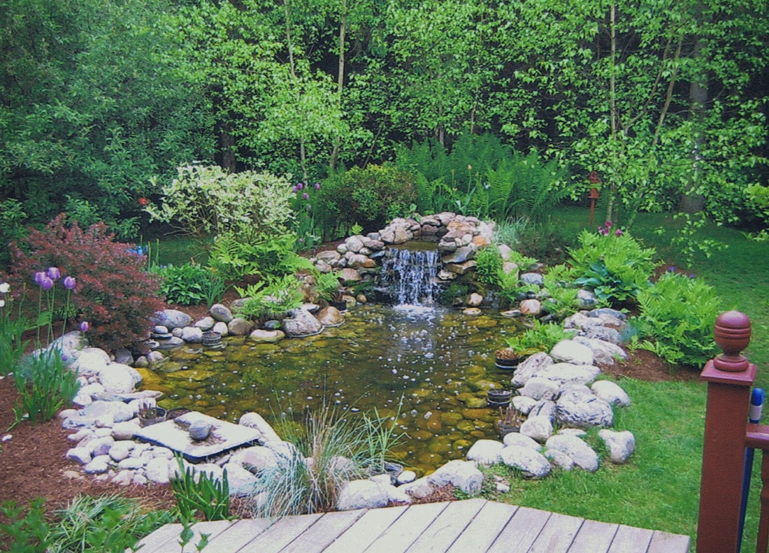 Ornamental ponds and waterfalls 100 images 50 pictures for Landscape design group